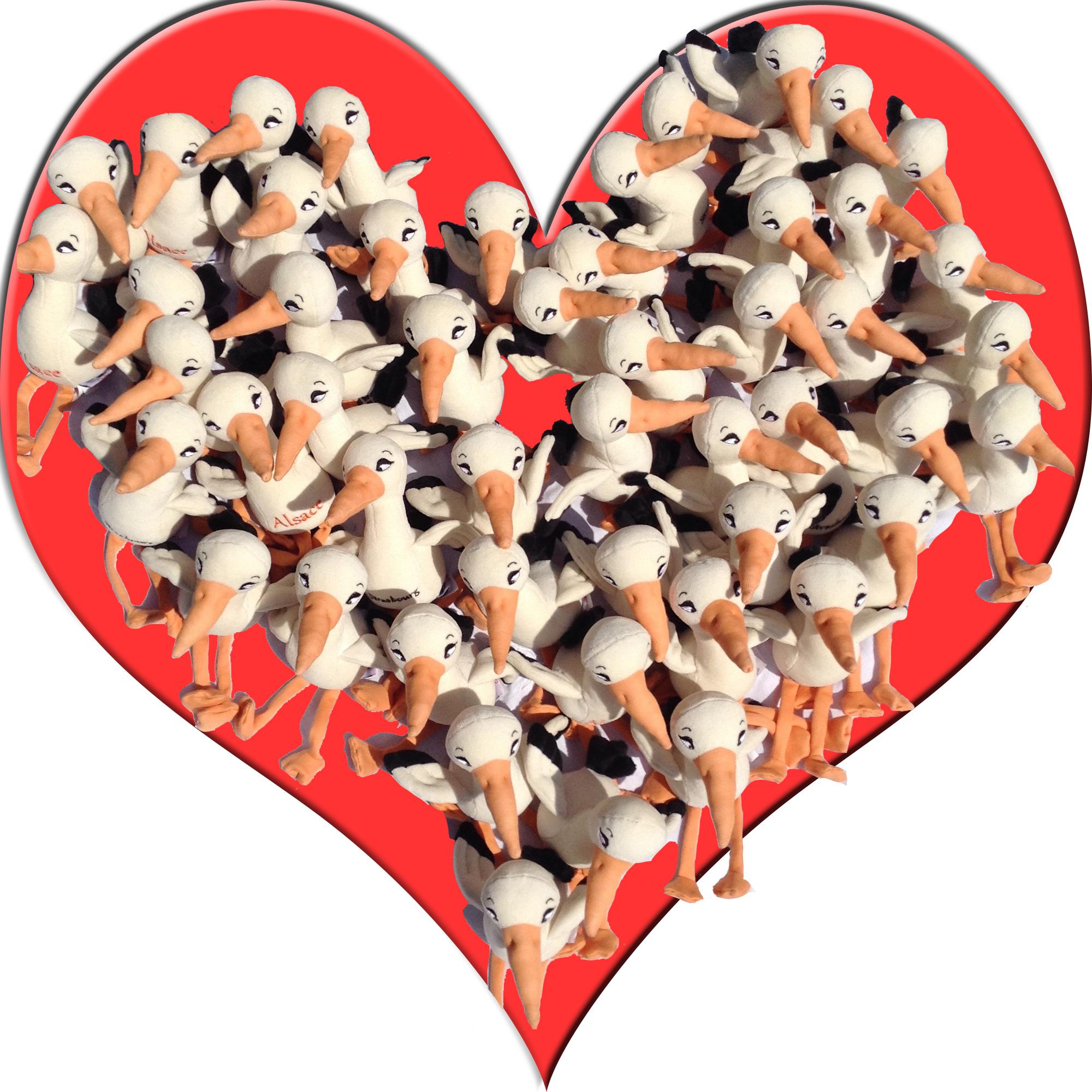Coeur cigogne
